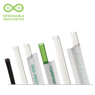 Renewable & Compostable Straws